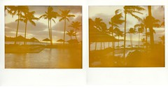 Windy side of the island (~KIM~) Tags: ocean northshore diptych hawaii oahu sunset expired polaroid spectra