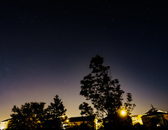 Stars and Houses (Tk_White) Tags: olympus omd em5 mark ii 12mm f2 stars astrophotography trees stacking astrometrydotnet:id=nova1649389 astrometrydotnet:status=failed