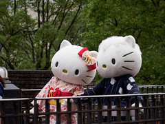 P7230608.jpg (mono0x) Tags:       danielstar greeting hellokitty kittywhite puroland sanrio    jp