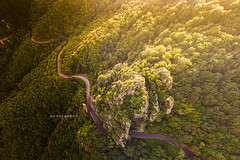 Perfection. (arturii!) Tags: wow amazing awesome superb interesting stunning impressive nice beauty great arturii arturdebattk canonoes6d gettyimages travel trip tour route viatge holidays vacations drone nature montseny catalonia catalunya europe landscape natura dji phantom3 curves asphalt tunnel magical paradise perfect roadtrip above aerial elevated viewpoint forest woodland mountain valley trees spring sunset sunbeam sunlight flying cool visual
