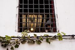 La espera del t (DANG3Rphotos) Tags: espera te wait await marruecos chefchaouen chaouen nikon d7100 nikonista dang3rphotos dang3r creative look vision style creativo imagen photo 2015 shot camera inspiration ver like this photos foto fotografia love art artist life