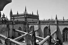 'Finials' (EZTD) Tags: eztd eztdphotography eztdphotos photos fotos nikond90 sevilla seville sevilha spain espana espagne spana finials catedraldesevilla roof architecture dom cathedral