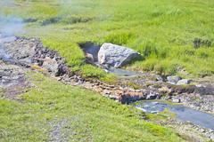 Hveravellir 18 (mariejirousek) Tags: hveravellir geothermal iceland