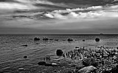 Kormorane (Wunderlich, Olga) Tags: ostsee steine sand kste wasser wellen ufer deutschland mecklenburgvorpommern rgen natur landschaft