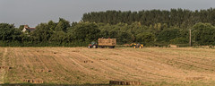 Getting the hay in.. (joanjbberry) Tags: moore moorewarrington field straw farmers bail hay vehicles farmvehicles