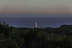 Cape Otway (SteffBoe) Tags: greatoceanroad gor visitvictoria australia visitaustralia capeotway 12apostles muttonbirdisland razorback lochardgorge bassstrait seascape sea coast