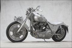 bikes-2009euro-002-b-l