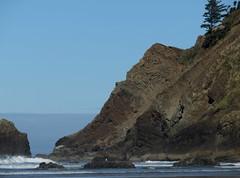 rock as squiggles (carolyn_in_oregon) Tags: oregon pacificocean ecolastatepark coast crescentbeach