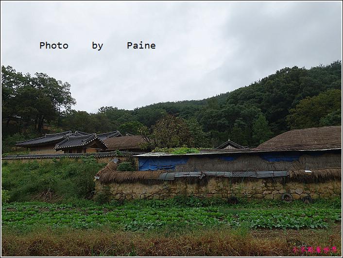 慶州良洞村 (52).JPG