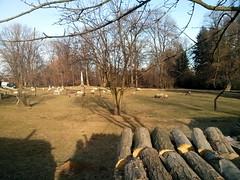Park von Schloss Zdislawitz