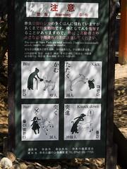 Beware of wild animals ... (Rita Willaert) Tags: japan nara deers narapark tdaijitemple cityofnara