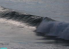 EarlyMorningGrinder (mcshots) Tags: ocean california travel winter sea usa beach nature water coast surf waves stock socal breakers mcshots reef swells venturacounty glassy combers peelers