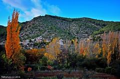 Otoo IV (tonomf) Tags: autumn trees fall colors landscape nikon rboles paisaje colores otoo nikondigital chopos altopalancia bejs nikondsrl nikonreflex nikond5100