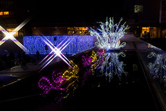 Water reflection at Lalaport Toyosu -Winter Illumination 2014-2015 (Toyosu, Tokyo, Japan) (t-mizo) Tags: christmas xmas light japan night canon tokyo illumination 日本 東京 canon5d クリスマス lr lightroom 光 lalaport 夜 toyosu 江東区 koutou イルミネーション koutouku 豊洲 canon2470mm ららぽーと ららぽーと豊洲 canon2470mmf4l lalaporttoyosu canon2470mmf4 eos5d3 ef2470mmf4lisusm lr5 ef2470mmf4l canon2470f4l eos5dmarkiii 5d3 canon2470f4 5dmark3 canon5d3 lightroom5 canon2470mmf4lisusm eos5dmark3 5dmarkiiii canon24704l canon2470mmf4lis canon24704