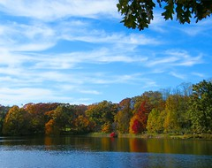 Start of Colors (Stanley Zimny (Thank You for 12 Million views)) Tags: autumn color rockefeller preserve