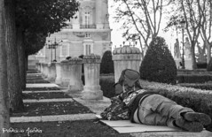 Reinos (Patricia Martin Navarro) Tags: madrid street white black blanco real photography calle y homeless negro royal palace palacio sintecho sinhogar realeza