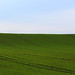 I've found the real Windows Xp background