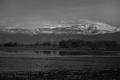 orthern Israel - Hula Valley 3 (Avi Morag) Tags: israel hula valley 2015 mounthermon   hulavalley avimorag