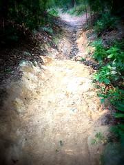 TRAKS-Trail-Day-Feb-2015-004 (Traks Of Malaysia) Tags: mountainbike malaysia mtb traks trailbuilding bukitkiara