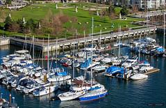 Marinaside (Clayton Perry Photoworks) Tags: winter canada vancouver marina boats bc falsecreek explorebc explorecanada
