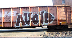 Avoid (No Real Name Given.) Tags: train graffiti pi moms boxcar freight rolling avoid gyser benching