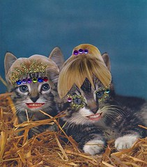 Siblings Smile (likim2) Tags: cats cute collage cat smiles kittens kawaii jewels
