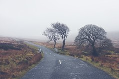 Sallygap (shaymurphy) Tags: road bridge trees ireland winter dublin irish mountains clouds countryside forsale military gap sally buy wicklow purchase irlanda irlande irska  sallygap irlandia redbubble   fujix100