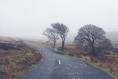 Sallygap (shaymurphy) Tags: road bridge trees ireland winter dublin irish mountains clouds countryside forsale military gap sally buy wicklow purchase irlanda irlande irska 爱尔兰 sallygap irlandia redbubble أيرلندا ایرلند fujix100