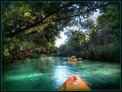 Cruising down the river... (edenseekr) Tags: river florida paddling kayaks photopainting weekiwachee springfed digitallypainted