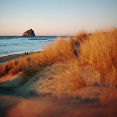 slow down (manyfires) Tags: ocean sunset sea film beach grass oregon analog mediumformat square golden coast sand pacific dunes shoreline hasselblad pacificocean shore pacificnorthwest coastline haystackrock pnw magichour pacificcity capekiwanda hasselblad500cm