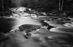 Silky Liquid (laurilehtophotography) Tags: nikon d3100 water river stream flow silky longexposure nikonphotography nature naturephotography blackandwhite bw suomi finland rutalahti rutajoki koskikarankierros trees forest rocks