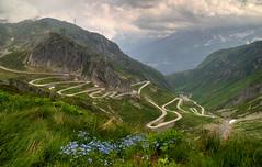 Swiss traditional way... (Alex Switzerland) Tags: gottardo gotthard alpi alps paesaggio landscape summer sommer estate fiori switzerland ticino uri canon eos 6d