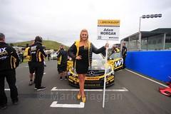 Adam Morgan on the grid during the BTCC Knockhill Weekend 2016 (MarkHaggan) Tags: knockhill scotland motorracing 2016 motorsport cars racing btcc btcc2016 14aug16 14aug2016 britishtouringcarchampionship britishtouringcarchampionship2016 gridgirls gridgirl grid mimigriffin adammorgan morgan wixracing wix mercedesbenzaclass mercedesbenz aclass mercedes