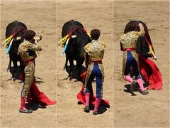 suerte de matar (aficion2012) Tags: ceret 2016 novillada corrida toros bulls bull fight novillos france francia d mario y hros de manuel vinhas abel robles collage suerte matar torero matador novillero