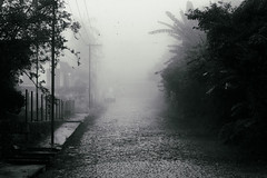 I lost myself among empty streets (AtEternitysGate) Tags: melancholy monochrome gloomy mystery sorrow solitude abandoned alone sadness empty street bw blackandwhite fog