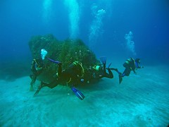 2016_0907_091031_005 (AAcero) Tags: buceo diving almera cabodegata isub