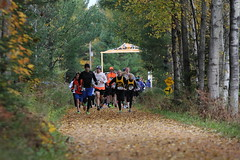 Three Eagle 2016 47 (3eaglehalf) Tags: marathon half halfmarathon 5k 5km race trail 3 eagle three river lakes wisconsin wi wish biking trails walking cycling recreation fitness family northwoods northern run 131 miles races active activecom pumpkin fall colors train training rhinelander sugar camp clearwater lake outdoor leaves