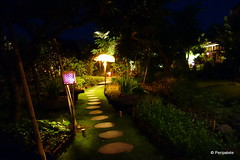 DSC06349 (Peripatete) Tags: bali canggu resort beach desaseni nature flowers fullmoon culture tradition architecture food