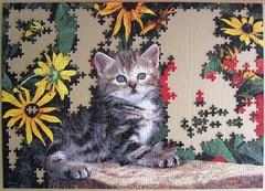 Poesy Prowler (Leonisha) Tags: puzzle jigsawpuzzle unfinished