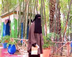 FEMINICIDE (Honevo) Tags: honevo hnevo feminicide morocco africa islam women