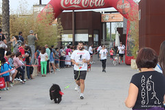 "Can-rerra Popular 2016 - Llegada y descanso tras la carrera -Arcadys.org Biopark Valencia-14 • <a style=""font-size:0.8em;"" href=""http://www.flickr.com/photos/145784091@N07/30176006421/"" target=""_blank"">View on Flickr</a>"
