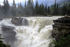 At the Brink (Patricia Henschen) Tags: jaspernationalpark athabascafalls athabasca river waterfall rapids jasper canada parkscanada parcscanada parcs parks northern rockies mountains rocky pacific northwest alberta icefieldsparkway