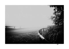 Pont (gravelin.yves) Tags: arbre brumes doubs flore genre paysage pont rivires rue urbain vaire