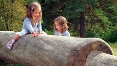 Riding Wood (gps1941) Tags: twins children girls treetrunk