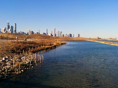 2015 Archive (Josh Koonce) Tags: canoneosrebelt1i northerly island northerlyislandpark chicagopark skyline chicagoskyline fall2015 autumn