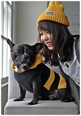 其實 ... 他們才是最登對的一對 (Danburg Murmur) Tags: woman dog chien hat studio chair taiwan bulldog hund taipei 台灣 台北 犬 狗 buldog bulldogge собака 개 bouledogue chó ブルドッグ câine бульдог สุนัข đực कुत्ता 불독 牛頭犬 કૂતરો ឆ្កែ બુલડોગ fardogstudio สุนัขบูลดอก एकप्रकारकाकुत्त