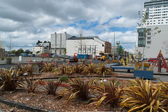 The Sound Garden is on the Move (Jocey K) Tags: city newzealand christchurch sky architecture clouds buildings cbd flax soundgarden roadcones