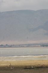 Ngorongoro Levels