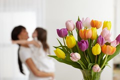 assorted color purple yellow orange and pink tulips in a glass vase with mom holding daughter in background (ProFlowers.com) Tags: iris boy flower floral girl rose mom child daughter mother son tulip vase