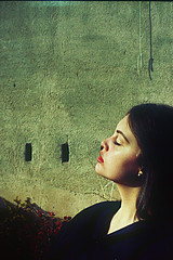 A (Mar.ga.ro) Tags: cameraphone barcelona china california birthday christmas city family flowers blue camping ireland friends england blackandwhite bw italy food dog cats baby india house holiday chicago canada black france flower color berlin green art film beach home dogs halloween church girl car amsterdam animal animals festival boston japan architecture clouds cat canon germany garden geotagged fun island hongkong graffiti hawaii dc concert europe honeymoon day florida hiking graduation july australia april